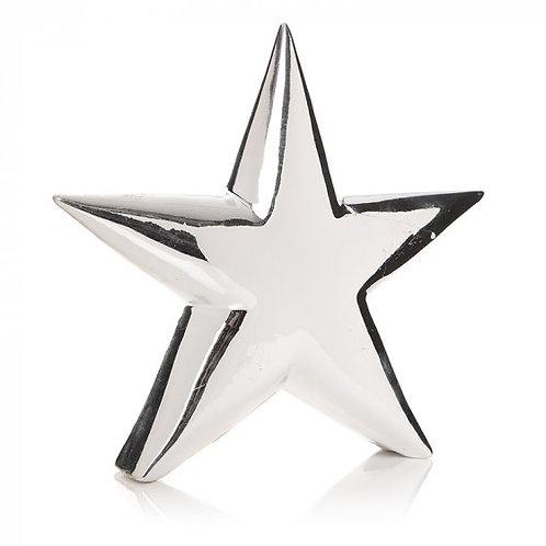 Standing Shiny Star