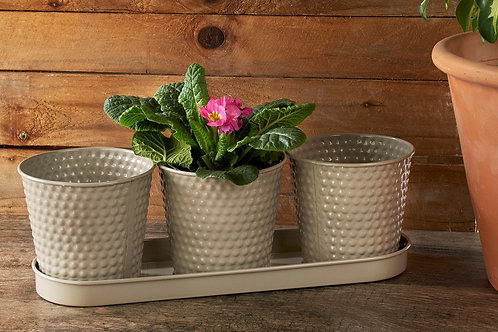 Embossed Planters (Set of 3)