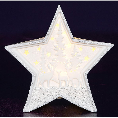LED Porcelain Star