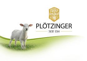Plötzinger Logo
