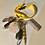 Thumbnail: Urban Keys