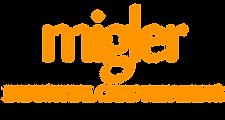 gtrade logo.png