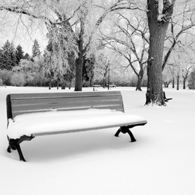 Winters Bench
