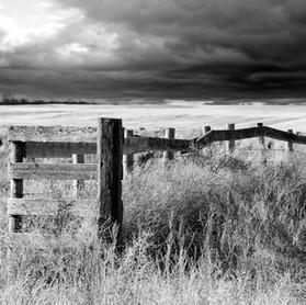 Harvest Fence 2