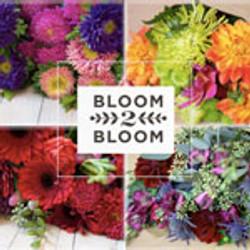 bloom-2-bloom