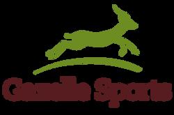 GS_Logo_Transparent