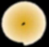 JBU_logo_smallgold-07.png