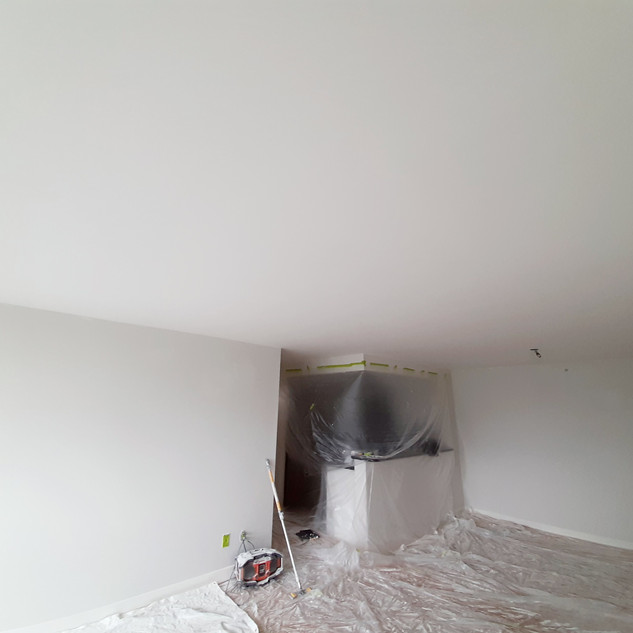Reliable Painter & Renovation Services