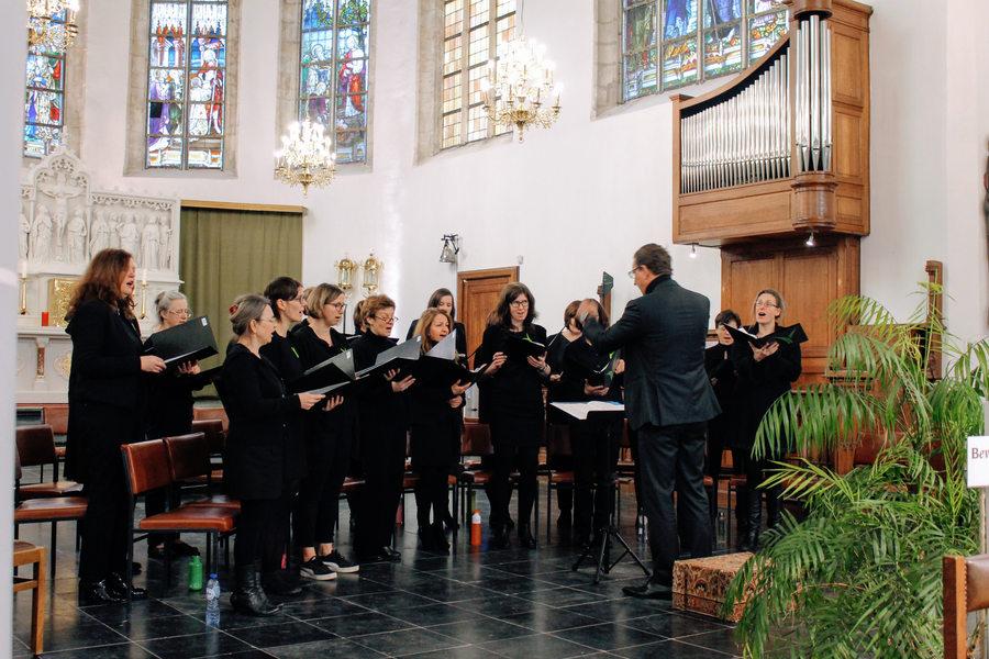 Sanseveria in de Martinuskerk