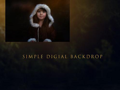 Simple Digital Backdrop + Editing Video