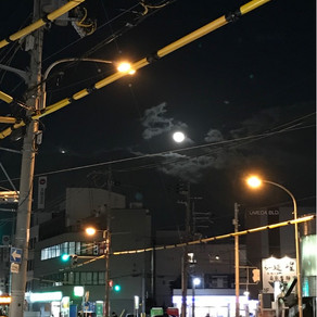 정월대보름  満月