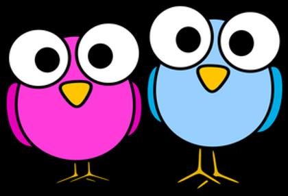 oiseaux.png