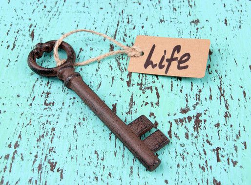 What will a Life Coach do for me?