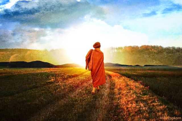 Meditation and Mindfulness Retreats and Workshops. Nilgiris, India.