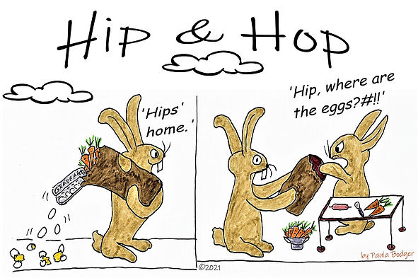 Hips home (2).jpg