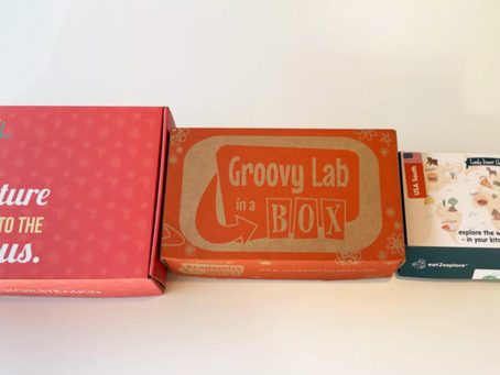Unboxing Kid's Subscription Boxes