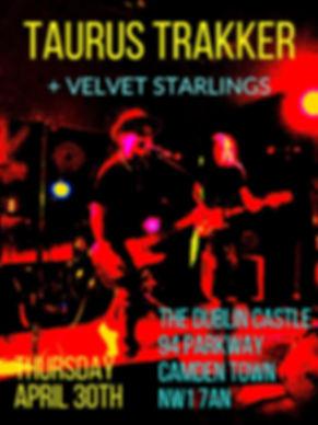 dublin castle flyer.jpg