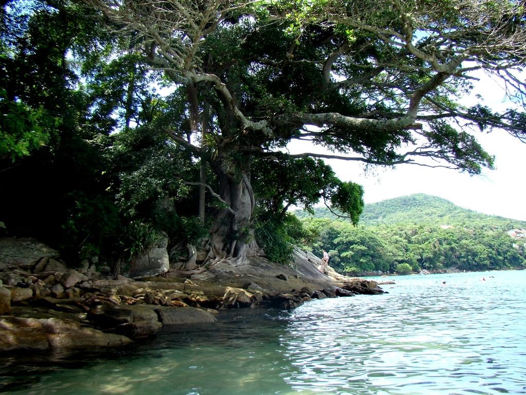 Praia do Biguá