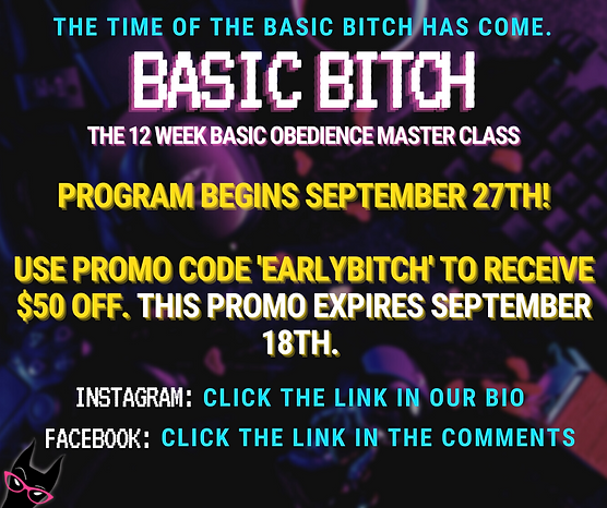 Final Page  Basic Bitch 12 Week Program .png