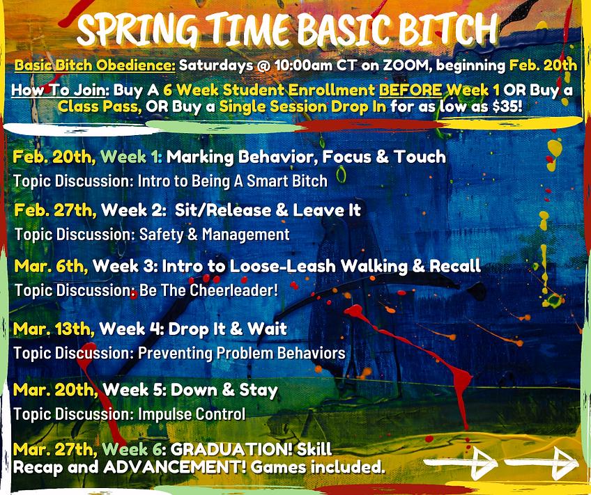 Basic Bitch FEBRUARY FINAL.png