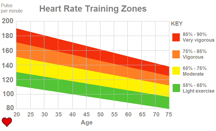 heart rate for fat burning zone
