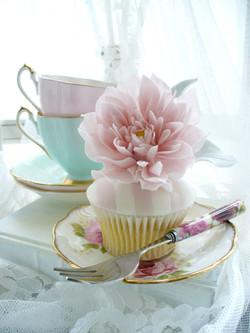 Dahlia Cupcake