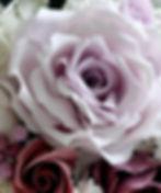 IMG_5162ipiccyshad_edited.jpg
