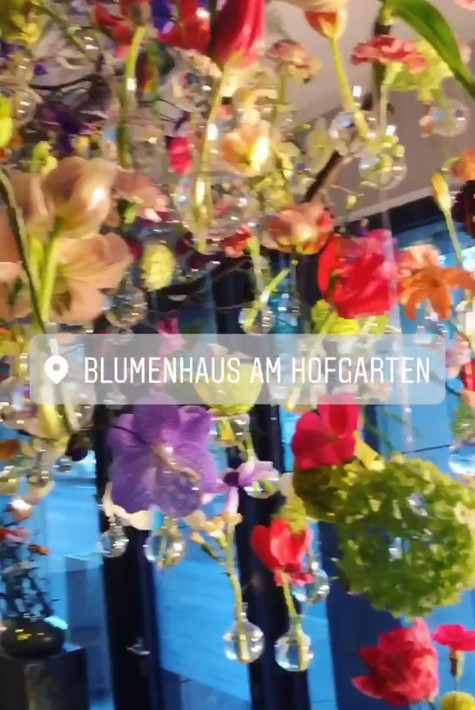 Video-01-Blumenhausamhofgarten.mov