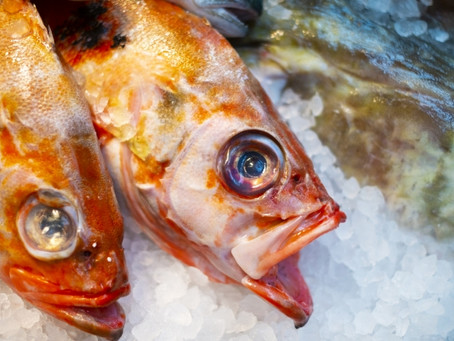 Your health is in danger from consuming Japanese seafood..?