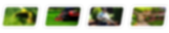 SmallImageIcons-01.png