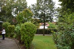 Wohnheim Garten
