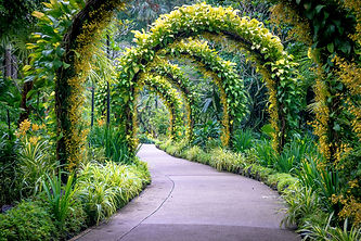 pow-golden-arches-in-singapore-s-botanic