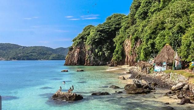 isla del coral guayabitos.webp