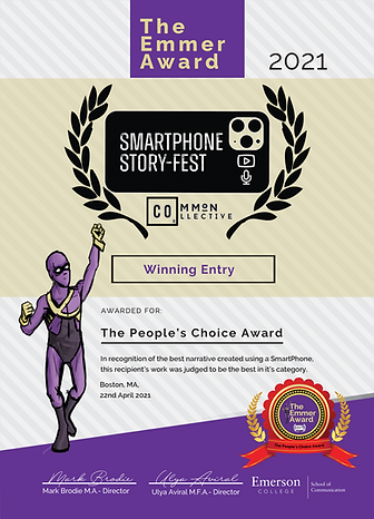 The Emmer Award Certificate-Sample.png