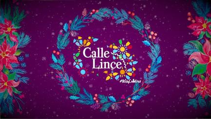 Calle Lince - Feliz Navidad - Social Video