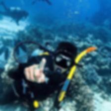 Sam Merritt, videographer,video,scuba, ocen