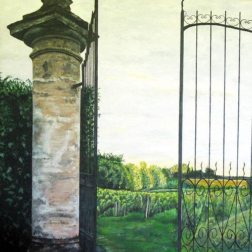 Chateau Puy-Descazeau Vineyard (France)