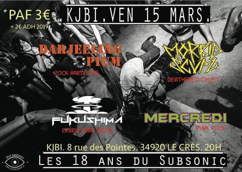 15/03/19 - Live, Darjeeling Opium (Fatcat records) Le KJBI, Le Crès(34).