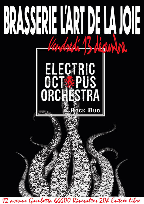 13/12/19 - Live, Electric Octopus Orchestra (Fatcat records), Brasserie l'Art de la Joie à Rives