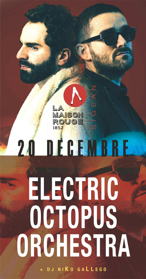 20/12/19 - Live, Electric Octopus Orchestra (Fatcat records), La Maison Rouge, Sigean(11).
