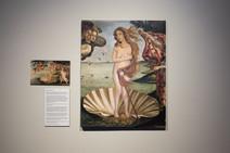 Birth of Venus Mariam Paré