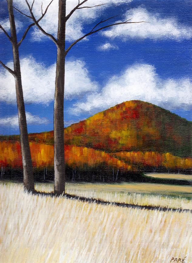 Autumn Hills_650.jpg