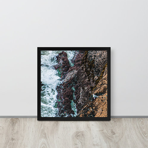Seagull on the Rocks Framed poster