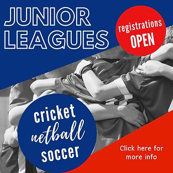 junior cricket (3).png