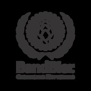 BandBier