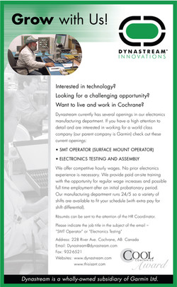 DSI.AD.job.tech
