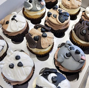 Dog cupcakes Bumbleberry Bakes.jpg