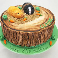 Guinea Pigs cake.jpg