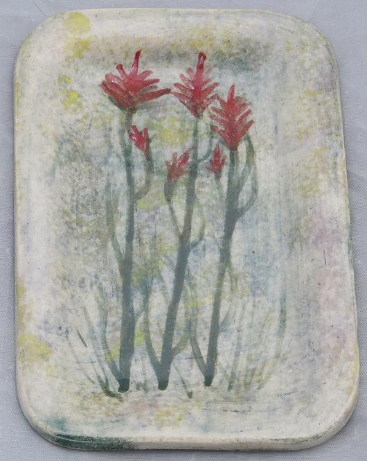Small Indian Paintbrush 03
