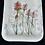 Thumbnail: Small Indian Paintbrush 05